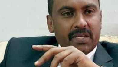 محمد الفكي سليمان عضو المجلس السيادي