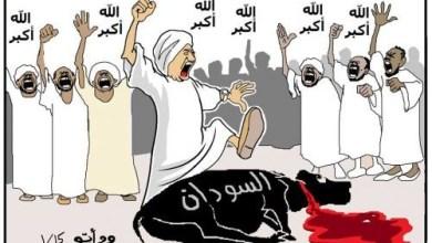 انفصال الجنوب والطيب مصطفى ... كاريكاتير ود أبّــــو