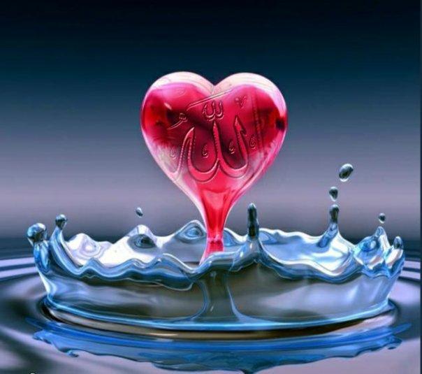 Menghidupkan Hati