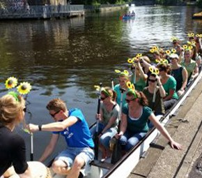 Sonnenblumen am Anleger Hamburg