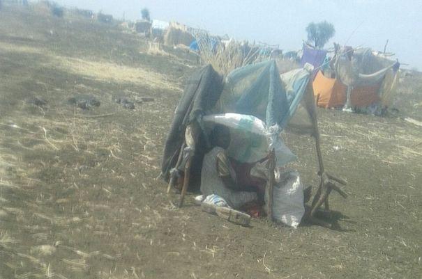 تقرير يكشف عن كارثة بمنطقتي جنوب كردفان والنيل الازرق