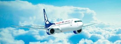 طائر يجبر طائرة على الهبوط بمطار الخرطوم