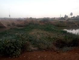 لجنة القضايا المطلبية: محاولات نزع أراضي حي الشاطئ استمرار لاستهداف أراضي المواطنين