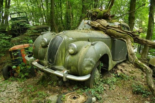 carros_vintage_abandonados_2
