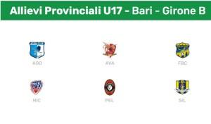 Allivi Provinciali U17