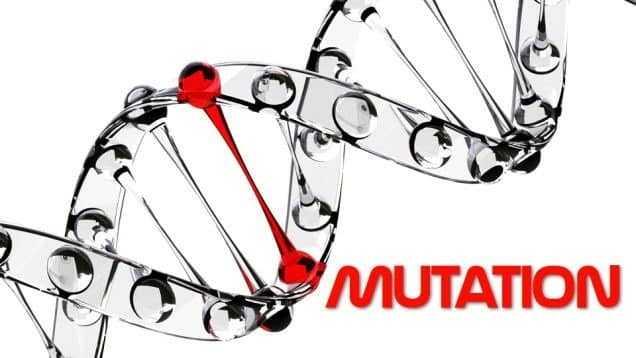 الطفرات الوراثية Genetic Mutations