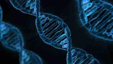 دراسة: استخدام الحمض النووي لتشخيص السرطان في مراحله الأولى