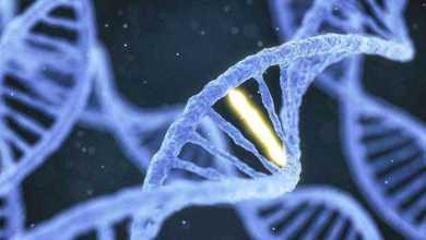تقنيات تحرير الجينات قد تزيد من خطر الإصابة بالسرطان