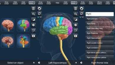 برنامج التركيب التشريحي للدماغ - Brain Anatomy