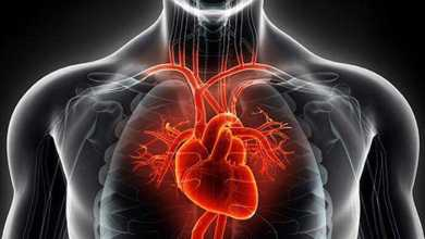 قصور عضلة القلب يتسبب في تزايد الوفيات بين البالغين الأصغر سنًا