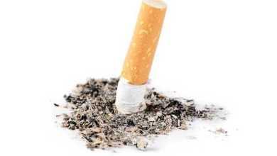 منظمة الصحة العالمية تُصرح: التدخين يقتل 8 ملايين شخص سنويًا !