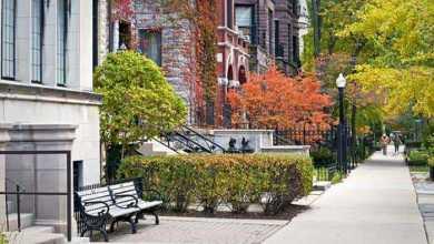 دراسة: سكان المنازل المُحاطة بالمساحات الخضراء يتمتعون بصحة أفضل