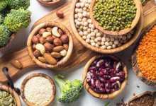 البروتينات النباتية