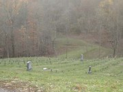Athens Cemetery - picture provided by Denise Huff