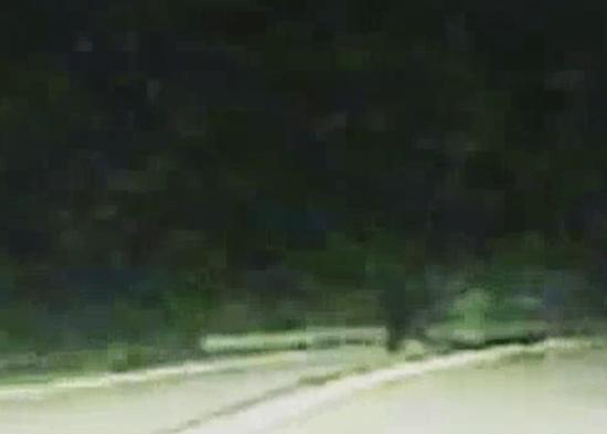 Lumpkin County Georgia dash-cam Bigfoot video