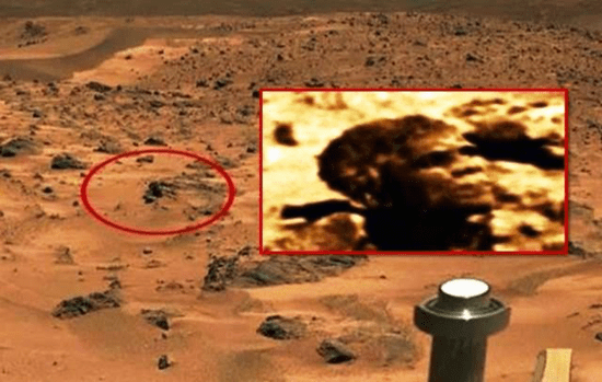 Head that looks like President Barack Obama found on surface of Mars