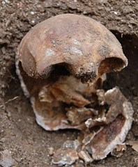 "Workmen carrying out excavation work at the rear of the old pub uncovered a ""dark circular object"", which turned out to be a woman's skull"