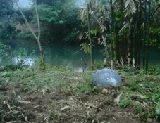 One of the mysterious metal balls fell near a stream in Vietnam