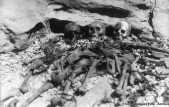 Bones uncovered on Deadman's Island in Vancouver