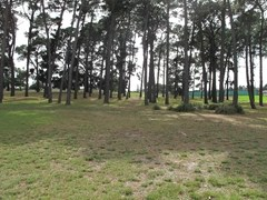 The area where the Westall UFO landed (modern day)