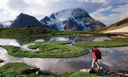 Walk Outside In Alaska- Exploring Movement
