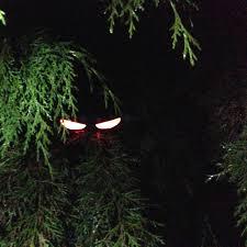 5 Glowing Halloween Ideas