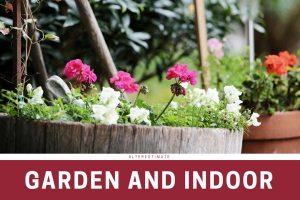 https://i1.wp.com/www.alterestimate.com/wp-content/uploads/2017/09/category-garden-indoor.jpg?resize=300%2C200&ssl=1