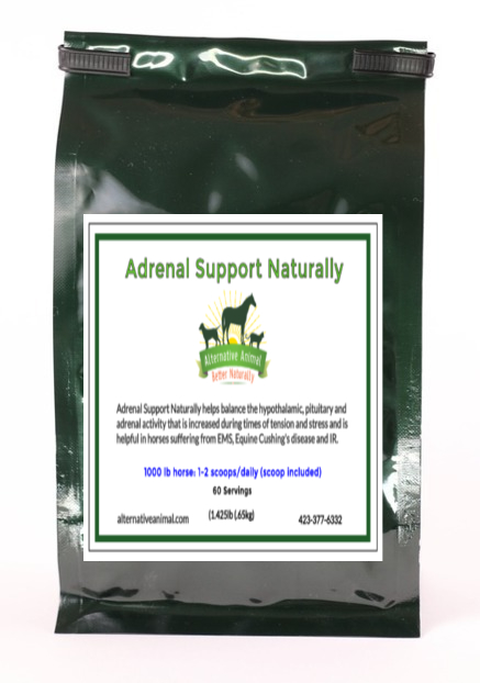Adrenal Support Naturally-Adrenal Support for Horses