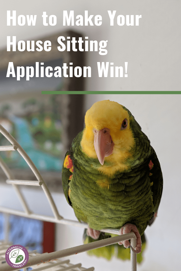 How to Create the Perfect Application Message for a House Sit