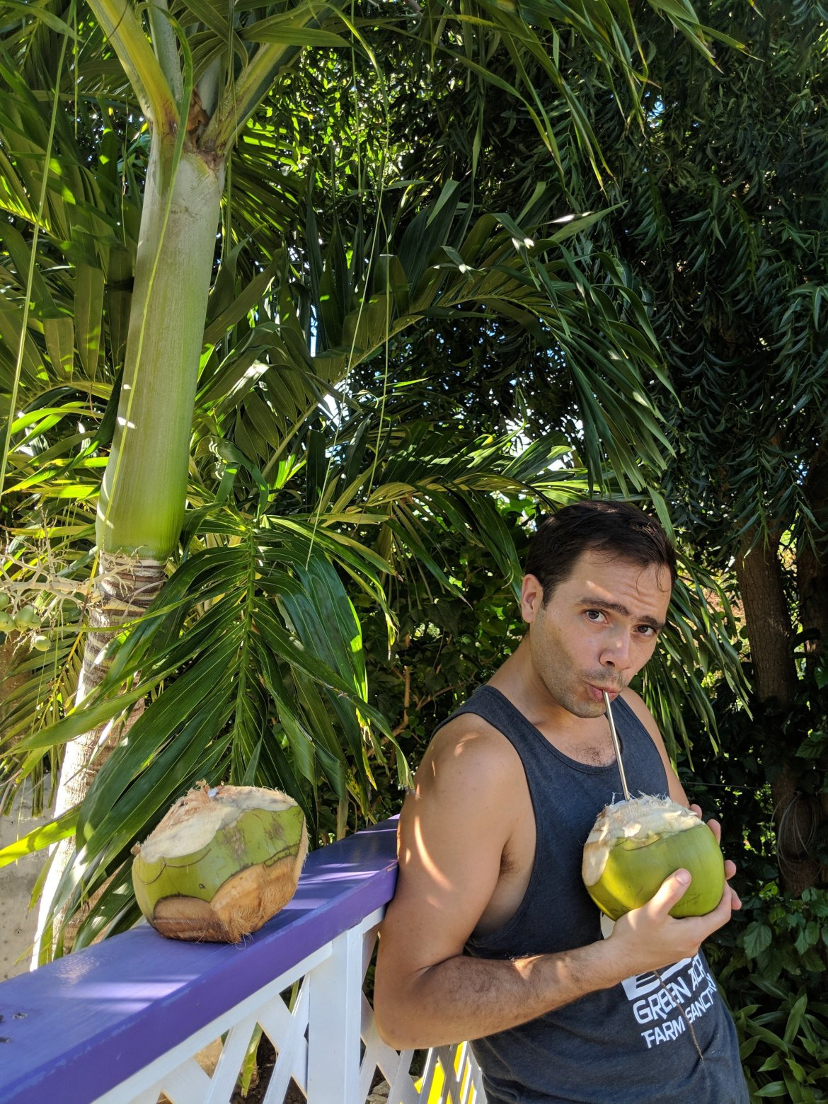 Man drinking coconut water from coconut