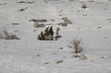 2014-02-23-Altiplus-Calern-IMG_3945