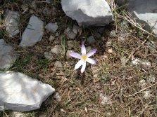 2014-03-16-Altiplus-Utelle-Photos_Chantal-12