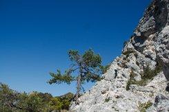 2014-05-18-Altiplus-Cime_Collettes-IMG_4974