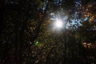 2014-11-16-Altiplus-St_Vallier-IMG_7433