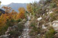 2014-11-23-Altiplus-Clans_Ste_Anne-IMG_7609