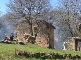 2015-04-12-Altiplus-Le_Reveston-Photos_Chantal-15