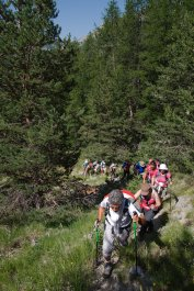2015-07-19-Altiplus-Plan_Tendasque-IMG_0187
