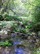 2016-05-15-Altiplus-Vescagne-Photos_Domi-IMG_1826