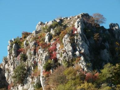 Altiplus, Club randonnée dans la 06, 29 octobre 2016 : le Gramondo;
