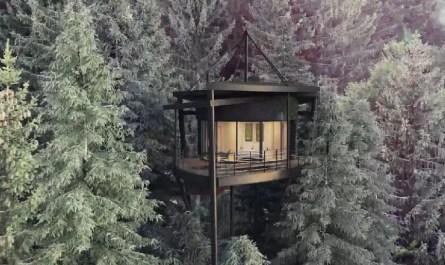 cabane en forme de feuille