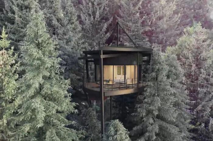 Nouveauté Hiver 2020-21 : une cabane « feuille » face au Mont-Blanc !