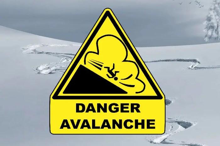 Tuto hiver : comment survivre à une avalanche ?