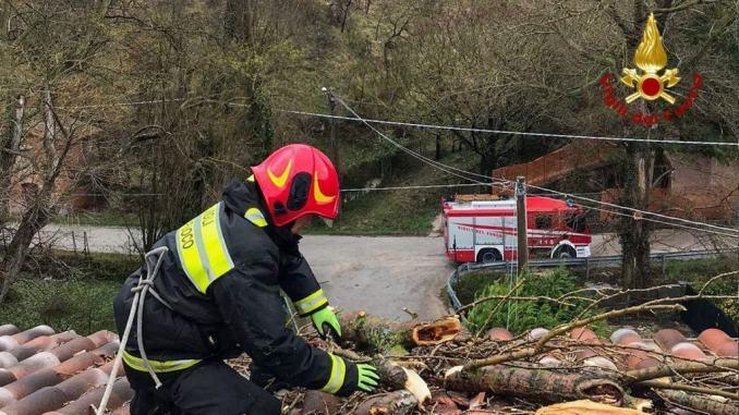 A Vaccara di Gualdo Tadino un albero si è schiantato su una casa