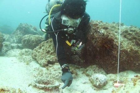 Momenti di indagini della zavorra della nave di Yamami 14