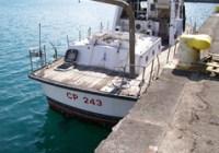 CP 243