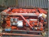 motori 019