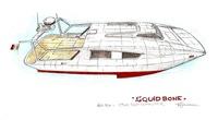 Squid-Bone-17m