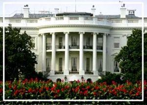 Grande spavento alla Casa Bianca: spari contro le vetrate