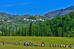 Una veduta delle colline di Capannori