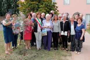 La visita all'olivo in memoria di Caterina Botta